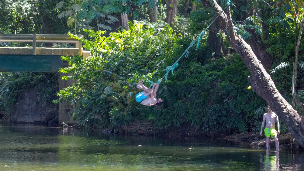 rainforest waterfall costa rica